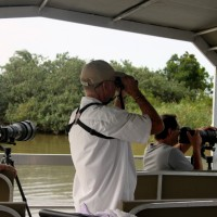Hippo & Croc Boat cruise st lucia estuary with heritage tours