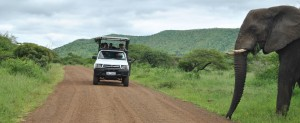 heritage safari