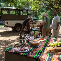 Cape Vidal Safari & picnic