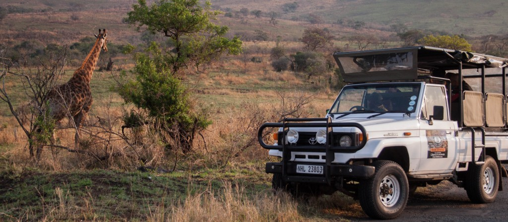 heritage tours game drive vehicles