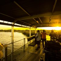 boat safari with heritage tours