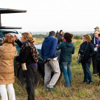 hluhluwe imfolozi park safari with heritage tours and safaris