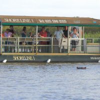 hippo & croc boat cruise isimangaliso wetland park