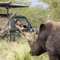 2 day safari package