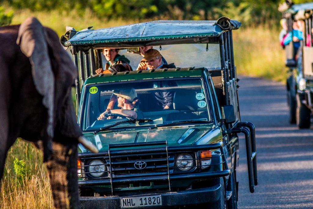 Hluhluwe-Imfolozi Park Day Safaris