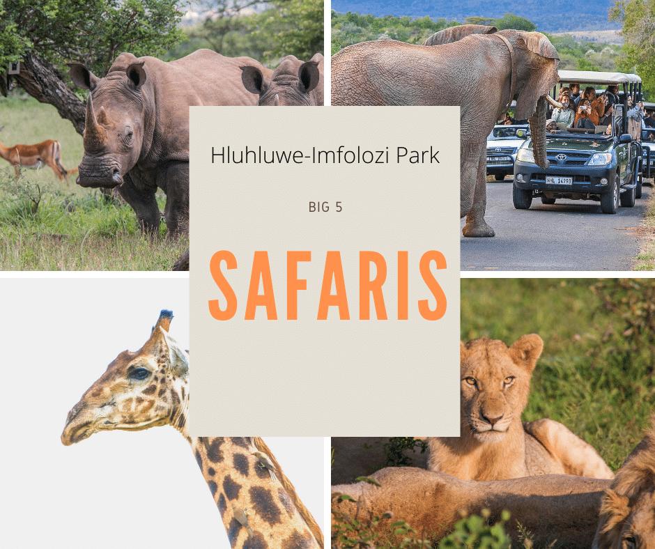 hluhluwe-imfolozi park big 5 safaris